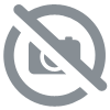 PACK DECOUVERTE ABSOLUTO 9 flacons de 10 ml